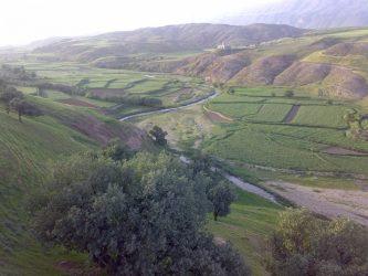 روستای چگنی؛ سر مست از عطر برنج عنبربو